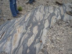 Boudinage - layers of rock stretched and pulled apart like taffy under a thin veneer of desert sediment