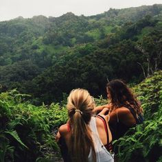 Lost in the rain forest. Mother Nature. Greenery. @davistaylortc