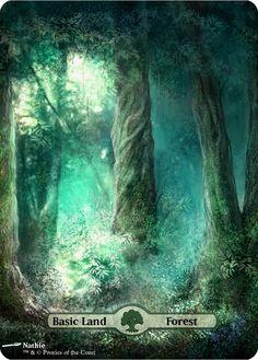 Basic Land - Forest