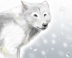 wolf wolves anime snow deviantart drawings sign cute cygnus uploaded user ayame appearance