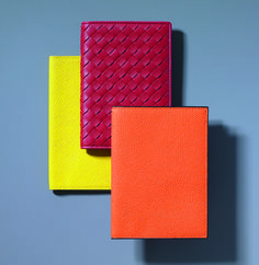 Colored Passport Cases with a First-Class Personality