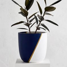 Design Twins Pots are the perfect addition to any home.Why plants make us happy :) Painted Plant Pots, Painted Flower Pots, Diy Concrete Planters, Diy Planters, Flower Pot Design, Pottery Painting Designs, Pot Jardin, Concrete Crafts, Plant Design