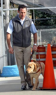 Guide Dogs for the Blind has a neat obstacle course which could be useful for future training.
