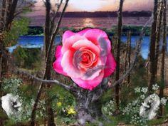 image for poem #34