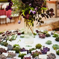 wedding reception ideas-succulent escort cards and place cards