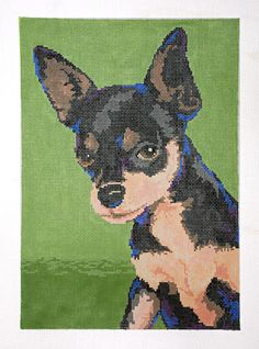 "Chihuahua by Ruth Schmuff Designs -    1407 - 18ct  1408 - 13ct    The newest addition to the dog show is the chihuahua. Big dog personality in a little dog body. 7.25"" x 10.25"". Stitchpainted on 18ct. Also available 9.75"" x 13.5"" on 13ct"