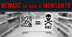 Monsanto became a leading producer of polychlorinated biphenyls in the U.S. The toxicity of PCBs were known, and concealed, by Monsanto executives.…