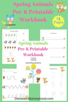 Spring Pre-K Themed Spring Animals Pre-K Printable Workbook