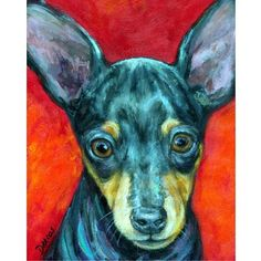 Hey, I found this really awesome Etsy listing at http://www.etsy.com/listing/35279871/miniature-pinscher-dog-art-8x10-print-of