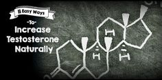 increase testosterone naturally 11