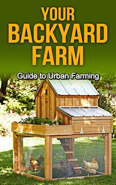 Chicken Coop - Building a chicken coop does not have to be tricky nor does it have to set you back a ton of scratch.Making the decision and discovering how to build backyard chicken coops, will be one of the best-made decisions of your life.Say hello to f Small Chicken Coops, Chicken Barn, Diy Chicken Coop Plans, Portable Chicken Coop, Chicken Coop Designs, Backyard Chicken Coops, Building A Chicken Coop, Backyard Farming, Chickens Backyard