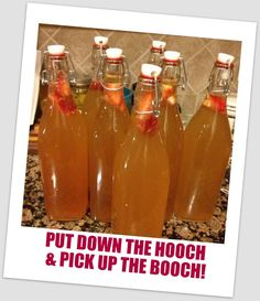 Basic Kombucha Recipe + Fun Flavor Variations   Phoenix Helix - *If you're still buying kombucha, I'm here to tell you that you can save a TON of money by making it at home. It's really pretty easy.