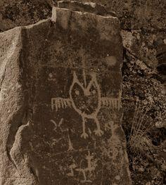 Temani Pesh-wa ………. (Written on Stone) | Spedis Owl - photo by Tree Oathe -
