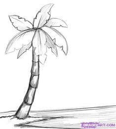 Drawing Doodles Sketches How to Draw a Palm Tree Step by Step Trees Pop Culture FREE Online Drawing Tutorial Added . Tree Drawing Simple, Palm Tree Drawing, Beach Drawing, Simple Tree, Drawing Flowers, Palm Tree Paintings, Flower Drawings, Beach Sketches, Tree Sketches