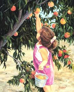 Just Peachy - June Dudley Fine Art Paintings and Prints