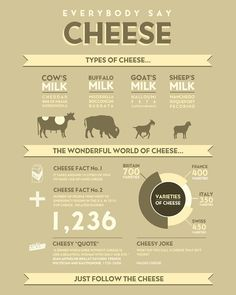 Cheese Infographic for Cheeeeese lovers! <3