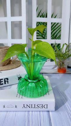 Diy Crafts For Home Decor, Diy Crafts Hacks, Diy Arts And Crafts, Crafts For Kids, Jar Crafts, Plastic Bottle Flowers, Plastic Bottle Crafts, Diy Bottle, Garden Ideas With Plastic Bottles
