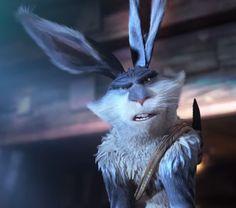 Bunny's face