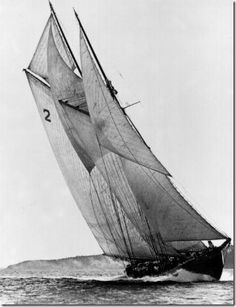 Bluenose.....our pride and joy!!