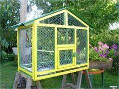 jaulas grandes para aves caseras - Buscar con Google