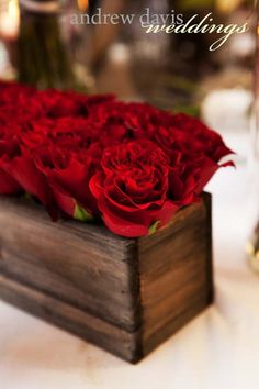 organic red roses by Michelle rose