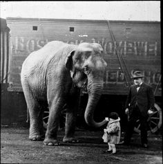 """""""Elephant meets little girl."""" [""""Mr E.H.Bostock possibly with Dixie the elephant"""".]~[This image comes from a collection of glass slides of fairground scenes found in the stores at Discovery Museum, Newcastle upon Tyne.]~[Contributed by Mr Geoffrey Younger.]~[Photo courtesy of: ~Tyne & Wear Archives & Museums~]'h4d'120916"""