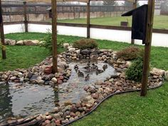 Photo Only - Lovely pond. I also like the solid plastic on the bottom foot of the pen to help against predators. Backyard Ducks, Ponds Backyard, Chickens Backyard, Backyard Waterfalls, Garden Ponds, Fish Ponds, Backyard Farming, Duck Enclosure, Duck Pens
