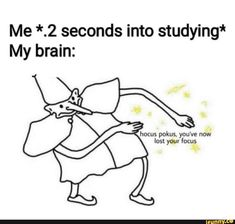Seconds Into Studying* My Brain Hocus Pokus You've Now Lost Your Focus 24 Hilarious Memes Awkward Moments 23 Crazy Funny Memes, Really Funny Memes, Stupid Funny Memes, Funny Laugh, Funny Relatable Memes, Funny Gifs, Funny Stuff, Random Stuff, Best Memes