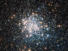 Space Photos of the Week: A Star Cluster Gets Patriotic Space photos of the week, June Mind Blowing Images, Online College Degrees, Star Cluster, Space Photos, Space And Astronomy, Deep Space, Photos Of The Week, First Photo, Mind Blown