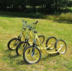 all terrain scooter - Google Search