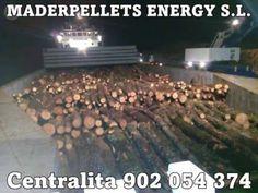 . Compramos pinos en pie fincas, tambien vendemos todo tipo de madera