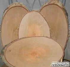 Срезы, спилы деревьев для творчества