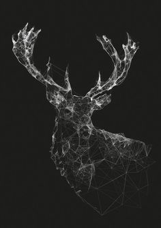Result from the plexus plugin for AfterEffects - complex node based iso style design  https://www.reddit.com/r/graphic_design/comments/3zejdt/what_is_this_style_of_design_called/