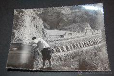 FOTOGRAFÍA DE LOS AÑOS 1950 FUENTES SAN QUINTI DE MEDIONA 8,5 X 11,5