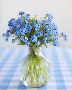 Blue flowers in a jar
