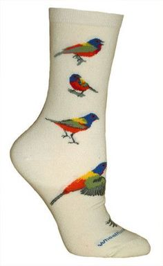 Wheel House Designs Painted Bunting Novelty Sock