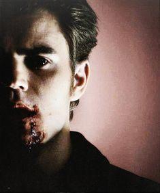 stefan salvatore, stefan, and Vampire Diaries image