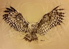 'Owl in flight'. Pen and acrylic paint on paper. By Renee Mitchell Original Artwork, Owl, Artist, Painting, Animaux, Owls, Artists, Painting Art, Paintings