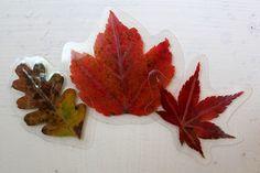 herfst bladeren lamineren, behouden hun kleur en kunnen steeds opnieuw gebruikt worden! Een aanrader!!