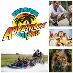 South Florida Adventure Pass - 7 Attractions 1 Low Price If you are looking for some fun things to do in Florida that won't cost you an arm and a leg, then