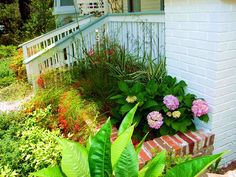 South Tampa cottage garden planter by TampaLandscapeDesign.com