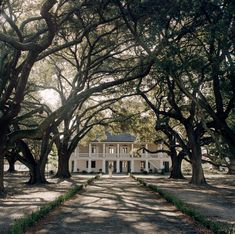 In Louisiana, a wealthy white lawyer has spent 15 years turning the Whitney Plantation into a museum dedicated to telling the story of slavery. Old Southern Plantations, Southern Plantation Homes, Louisiana Plantations, New Orleans Homes, New Orleans Louisiana, Slavery Museum, Abandoned Plantations, Old Farm Houses, Farmhouse