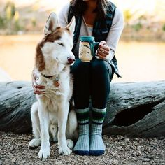 Husky and camping Husky, Love Dogs, Puppy Love, Animals And Pets, Cute Animals, Dog Photography, Mans Best Friend, Dog Mom, Dogs And Puppies
