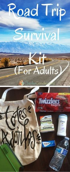 Survival Kit: For Adults Road Trip Essentials for the traveling adult! Items you don't want to forget! via Trip Essentials for the traveling adult! Items you don't want to forget! Road Trip Packing, Road Trip Games, Road Trip Essentials, Road Trip Usa, Packing Tips For Travel, Travel Ideas, Travel Hacks, Budget Travel, Trident