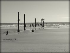 These pilings were all that was left of The Balinese Room after Hurricane Ike. Hurricane History, Texas Hurricane, Galveston Texas, Galveston Island, Texas Weather, Moving To Texas, Loving Texas, Powerful Images, Balinese