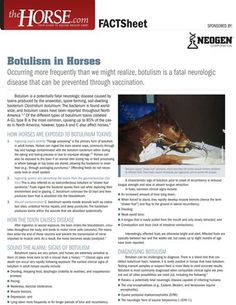 treatment of botulism in dogs