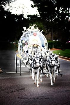 Star Wars Wedding Spotlight: YouPa + Brian | Magical Day Weddings | A Wedding Atlas Fan Site for Disney Weddings
