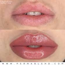 Lip Permanent Makeup, Lip Makeup, Cosmetic Lip Tattoo, Lip Color Tattoo, Eyebrow Embroidery, Lip Tips, Perfect Lips, Eyebrow Tattoo, Lip Fillers