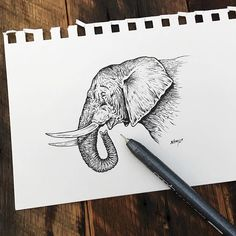 """"""" Hoping they don't only exist on walls for my future kids to see.   #elephant #art"""" Photo taken by @samlarson on Instagram, pinned via the InstaPin iOS App! http://www.instapinapp.com (10/16/2015)"""