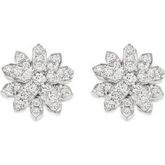 ASTLEY CLARKE Starburst 18-carat white gold and diamond stud earrings ($2,445) ❤ liked on Polyvore featuring jewelry, earrings, accessories, brincos, silver, white gold stud earrings, diamond stud earrings, monarch butterfly jewelry, butterfly jewelry and white gold jewellery